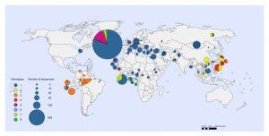 Hepatitis D virus genotypen